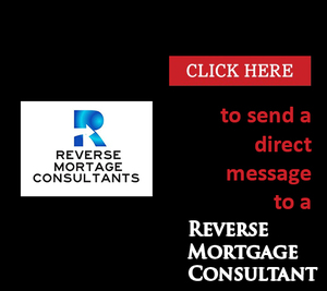 Direct Message Consultant